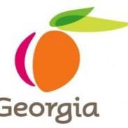 New State Profile: Georgia